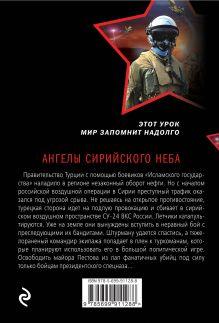 Обложка сзади Ангелы сирийского неба Александр Тамоников