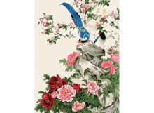 - Живопись на холсте 30*40 см. Райские птицы (106-AS) обложка книги