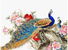 - Живопись на холсте 30*40 см. Китайские павлины (160-AS) обложка книги