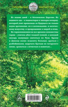 Обложка сзади Чернокнижник. Ученик колдуна Юрий Корчевский