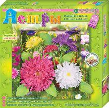 - Набор для изготовления картины Астры обложка книги