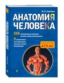 Боянович Ю.В. - Анатомия человека со страницами для раскрашивания обложка книги
