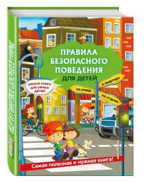 Василюк Ю.С. - Правила безопасного поведения для детей обложка книги