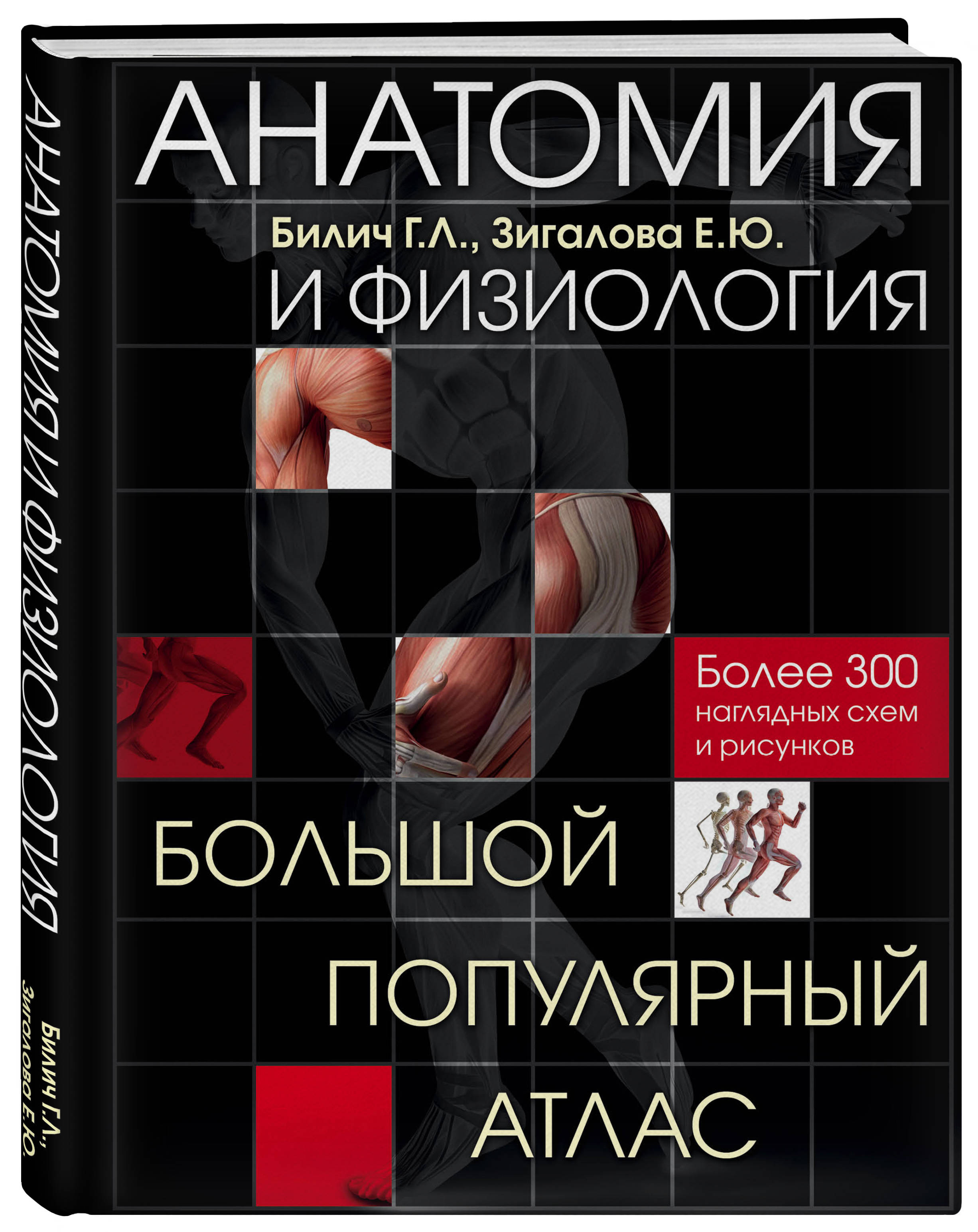 Анатомия и физиология. Большой популярный атлас ( Билич Г.Л., Зигалова Е.Ю.  )