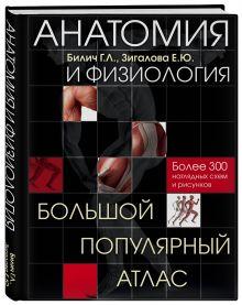 Билич Г.Л., Зигалова Е.Ю. - Анатомия и физиология. Большой популярный атлас обложка книги