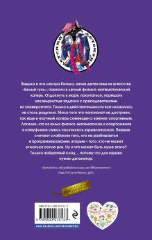 Обложка сзади Формула клада Илона Волынская, Кирилл Кащеев