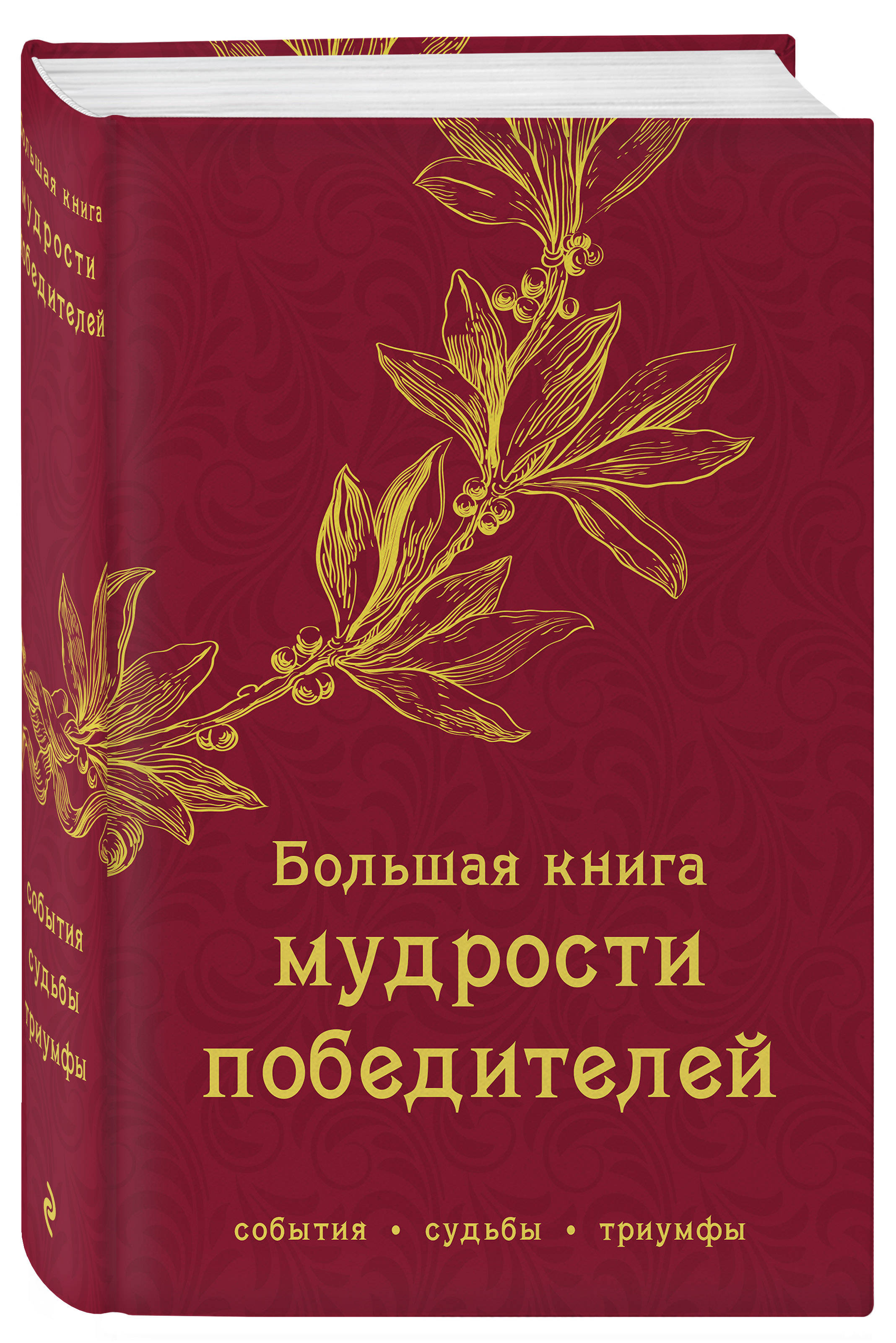 - Большая книга мудрости победителей поколение победителей dvd