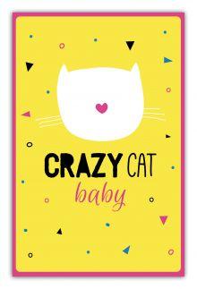 - Crazy cat baby (А5) обложка книги