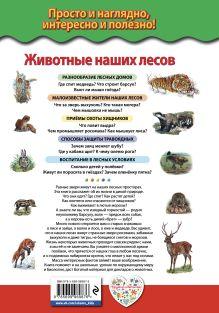 Обложка сзади Животные наших лесов. Все лесные звери России Ю.К. Школьник
