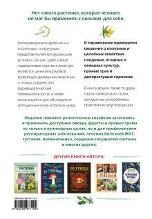 Обложка сзади Натуральная аптечка. Ягоды, овощи, фрукты, пряные травы Татьяна Ильина