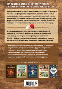 Обложка сзади Натуральная аптечка. Дары природы, которые вы можете применять с пользой для себя Татьяна Ильина