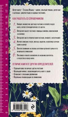 Обложка сзади Лечебные травы. Иллюстрированный справочник-определитель Татьяна Ильина