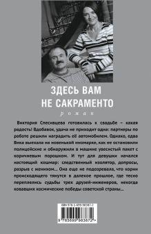 Обложка сзади Здесь вам не Сакраменто Анна и Сергей Литвиновы