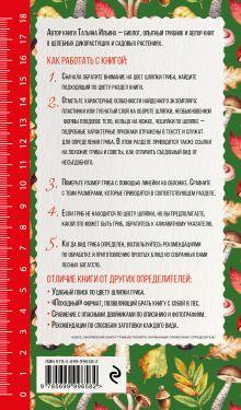 Обложка сзади Грибы. Иллюстрированный справочник-определитель Т. Ильина