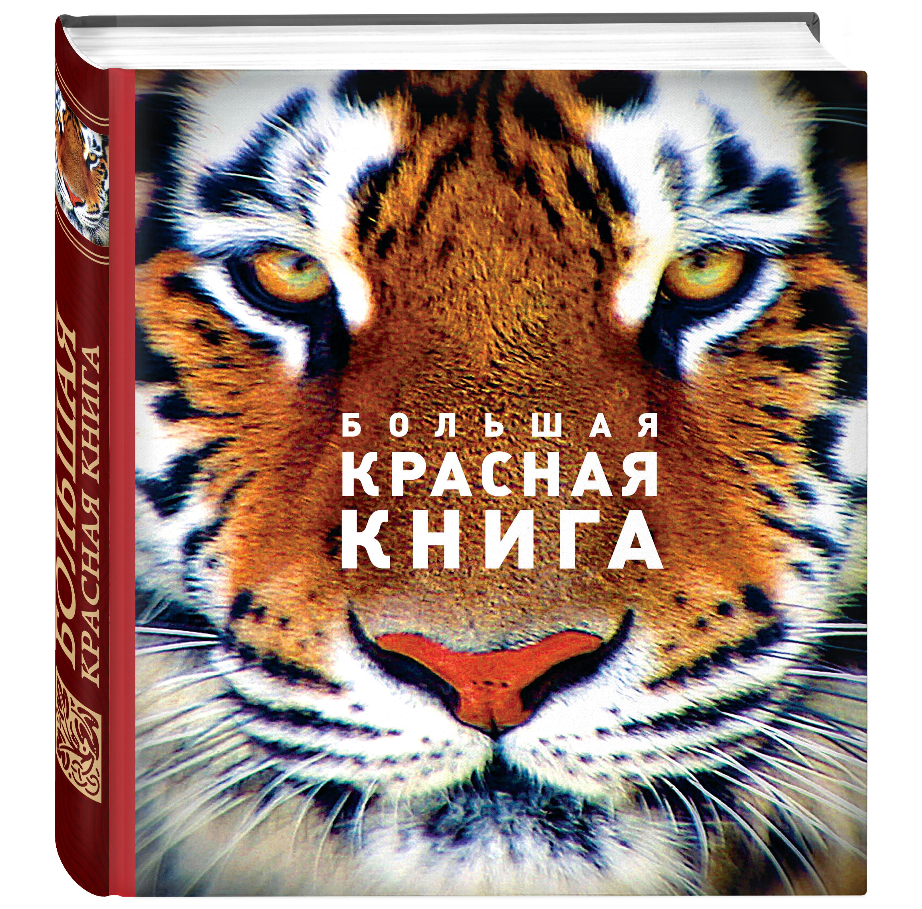 Скалдина О.В., Слиж Е.А. Большая красная книга (стерео-варио) бологова в моя большая книга о животных 1000 фотографий