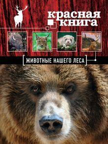 Обложка Красная книга. Животные нашего леса (ПР) Александр Очеретний