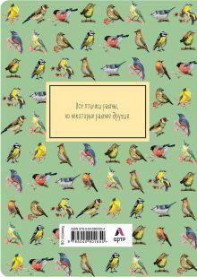 Обложка сзади Блокнот. Birds (формат А4, мягкая обложка, круглые углы, блок в точку) (Арте)