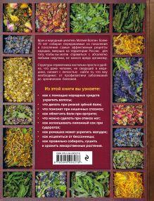 Обложка сзади Большой справочник народной медицины. 3000 рецептов из более 300 лекарственных растений Матвей Волгин