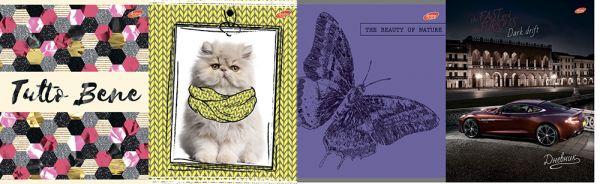 "Дневн шк 48л пластик 8401/4-EAC ""Tutto Bene; Бабочка; Кот в желтом шарфе; Dark Drit (авто)"""