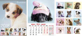 Календарь настенный 2018 Wсп 6л А3 RH34-EAC Rachael Hale