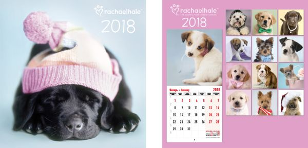 Календарь настенный 2018 скрепка 12л 280*285 RH35-EAC Rachael Hale