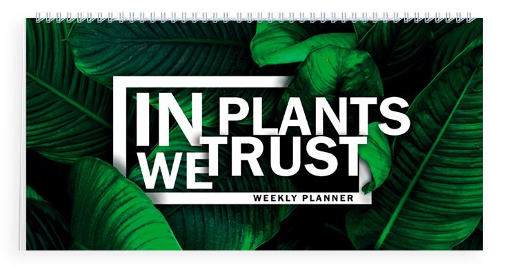Мини-планер. In PLANTS we trust economical importance of medicinal plants in dhudial chakwal pakistan