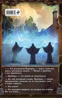 Обложка сзади Темный Паладин. Книга 3: Рестарт Василий Маханенко