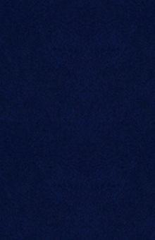 Обложка сзади Роковая Фемида. Судьбы российских юристов Александр Звягинцев