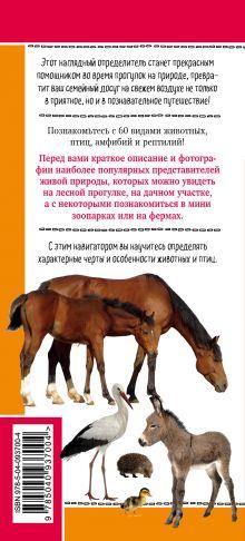 Обложка сзади Животные на ферме. Наглядный карманный определитель Ксения Митителло