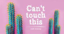 Обложка Мой планер. Колючие кактусы: Can't touch this (мини на навивке)