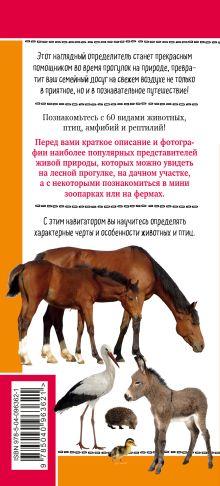 Обложка сзади Животные на ферме. Наглядный карманный определитель (для ПР) Ксения Митителло