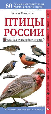 Птицы России. Наглядный карманный определитель (для ПР)