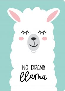 Обложка Блокнот. Лама. No drama (формат А4, мягкая обложка, круглые углы, блок в точку)