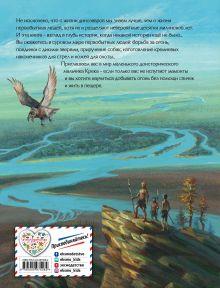 Обложка сзади Приключения доисторического мальчика (ил. В. Канивца) Д'Эрвильи Э.