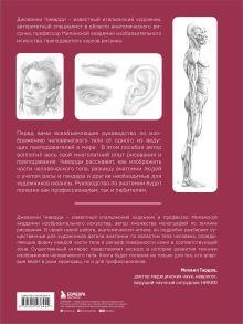Обложка сзади Анатомия для художника. Самое полное пособие по изображению человека Джованни Чиварди