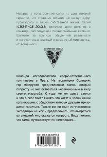 Обложка сзади Холод туманного замка Наталья Тимошенко, Лена Обухова