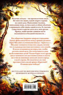 Обложка сзади День огня (#6) Катя Брандис