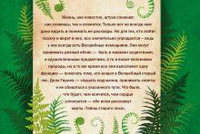 Обложка сзади Тайны старого леса: карты-оракулы (сказочные карты и подробное руководство в красивом подарочном футляре) Ирина Семина, Лилия Габо