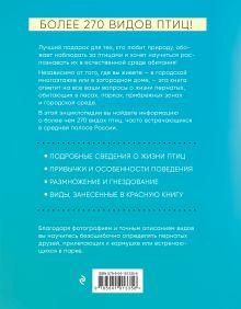 Обложка сзади Птицы России. Большая иллюстрированная энциклопедия Александр Матанцев