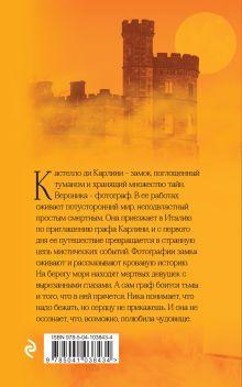 Обложка сзади Поглощенные туманом Анастасия Румянцева