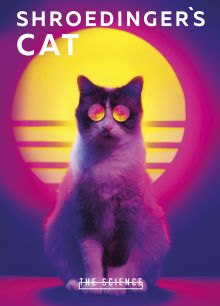 Обложка Тетрадь. Shroedinger's Cat, B5, мягкая обложка, 40 л.