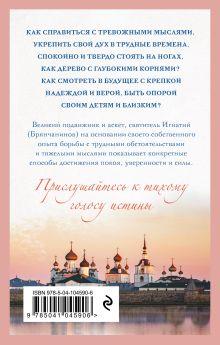 Обложка сзади Крепость и утешение Игнатий Брянчанинов