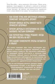 Обложка сзади Тайные знаки природы: как стать погодным детективом и читать приметы Петер Вольлебен