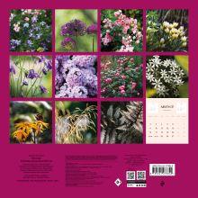 Обложка сзади Все в сад! Календарь настенный на 2021 год Ирина Чадеева