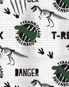 Обложка сзади Дневник школьный. Динозавры (А5, 48 л., печать по эко-коже)