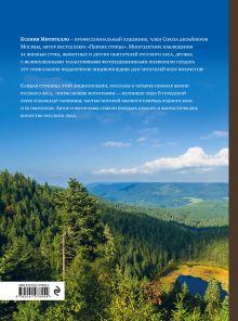 Обложка сзади Жизнь русского леса (издание дополненное и переработанное) (медведь) Ксения Митителло