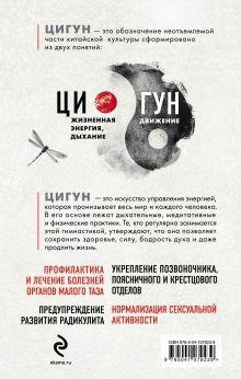 Обложка сзади Цигун. Простые упражнения для поддержания тонуса организма Александр Ушаков