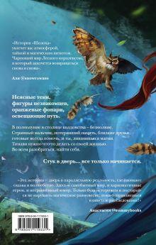 Обложка сзади Шолох. Теневые блики Антонина Крейн