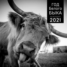 Год белого быка. Календарь настенный на 2021 год (300x300 мм)