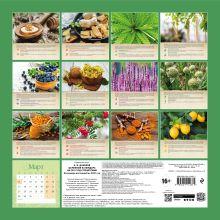 Обложка сзади Целебный календарь на 2021 год с рецептами от фито-терапевта Н.И. Даникова (300х300) Н. И. Даников
